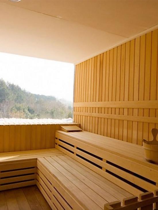 Sauna Panoramic